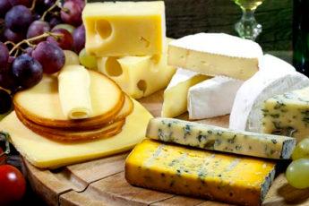 5 главных правил хранения сыра