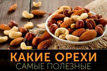 Самые полезные из орехов