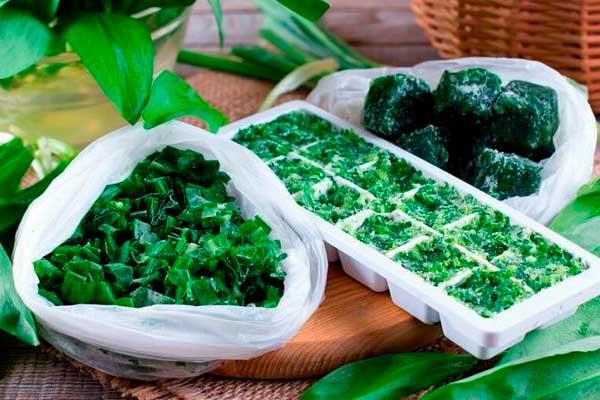 Как правильно заморозить зелень, сохранив в ней все витамины