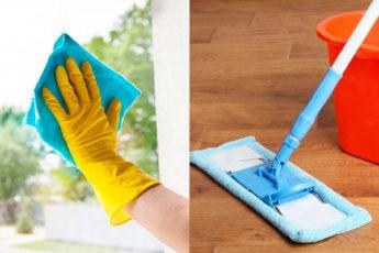 Способ, который позволит качественно вымыть окна за считанные минуты, а полы сделает чистыми и сверкающими