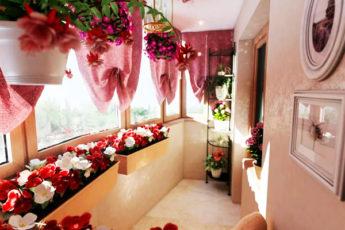 Идеи оформления балконов цветами