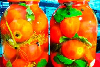 Проверенный рецепт помидоров прямым посолом на зиму. Как бочковые