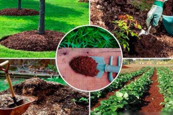 Делаем правильный компост для подкормки растений